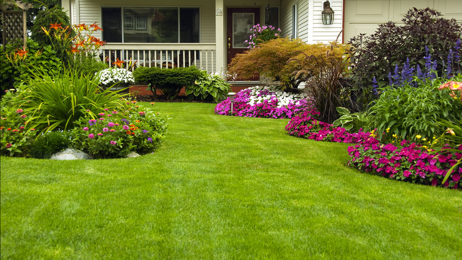 картинки газон с цветами месяц лета